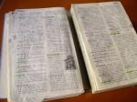 辞書。知らない単語には緑の色鉛筆でマークをつけていました。